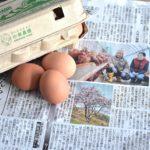 被災地の厚真町でゼロから再スタートした小林農園の卵