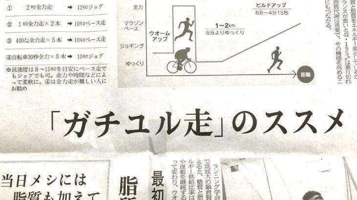 マラソンの練習「脂質代謝高め、失速防ぐ」