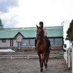 ブリティッシュスタイルの乗馬ができる北広島乗馬クラブ