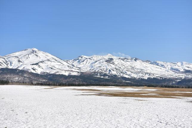 白金模範牧場から見る十勝岳連峰